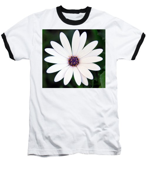 Single White Daisy Macro Baseball T-Shirt