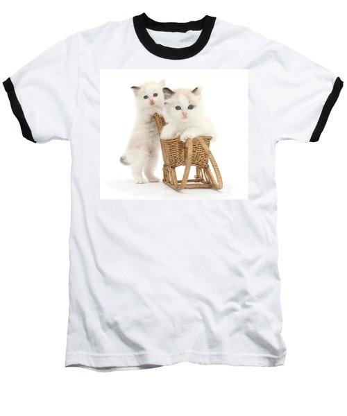 Sledging Kittens Baseball T-Shirt