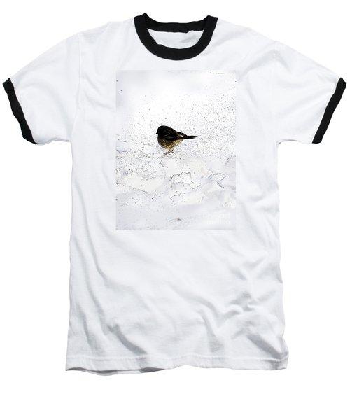 Small Bird On Snow Baseball T-Shirt by Craig Walters