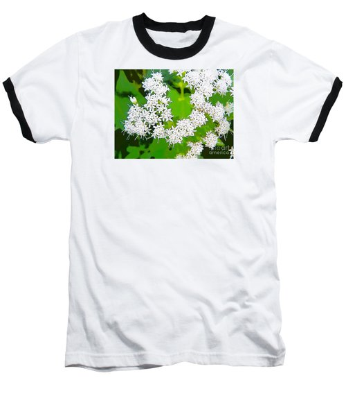 Small White Flowers Baseball T-Shirt by Craig Walters
