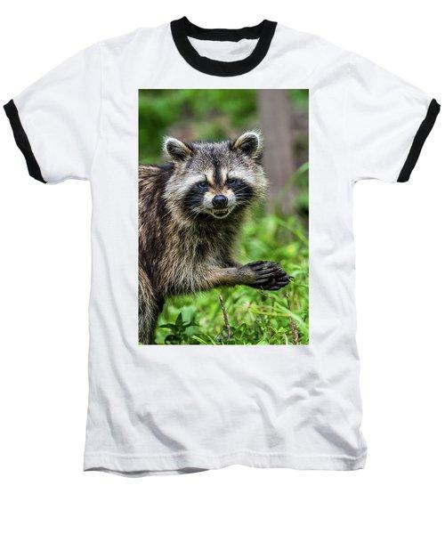 Smiling Raccoon Baseball T-Shirt by Paul Freidlund