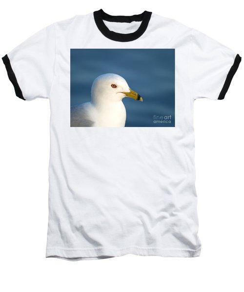 Smiling Seagull Baseball T-Shirt