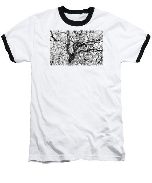 Snowy Oak Baseball T-Shirt