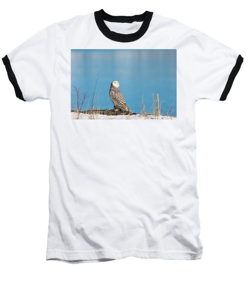 Snowy Watching A Plane Baseball T-Shirt