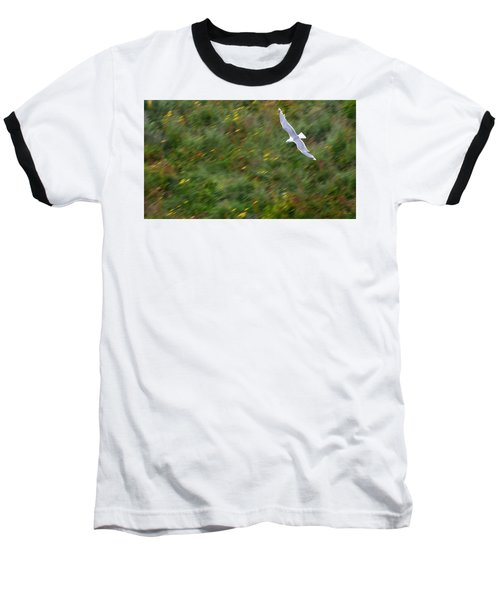 Baseball T-Shirt featuring the photograph Soaring Seagull by Joe Bonita