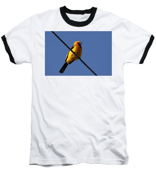 Spot Breasted Oriole Baseball T-Shirt
