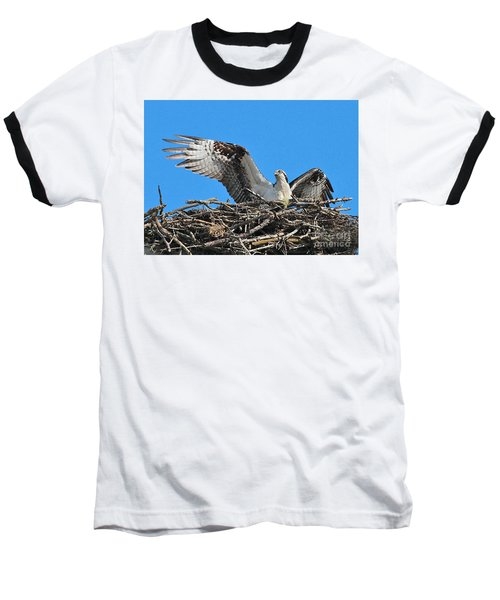 Baseball T-Shirt featuring the photograph Spread-winged Osprey  by Debbie Stahre
