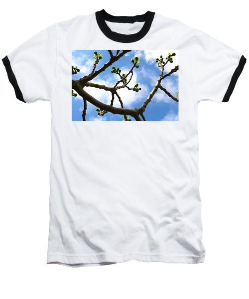 Fig Tree In Spring Baseball T-Shirt