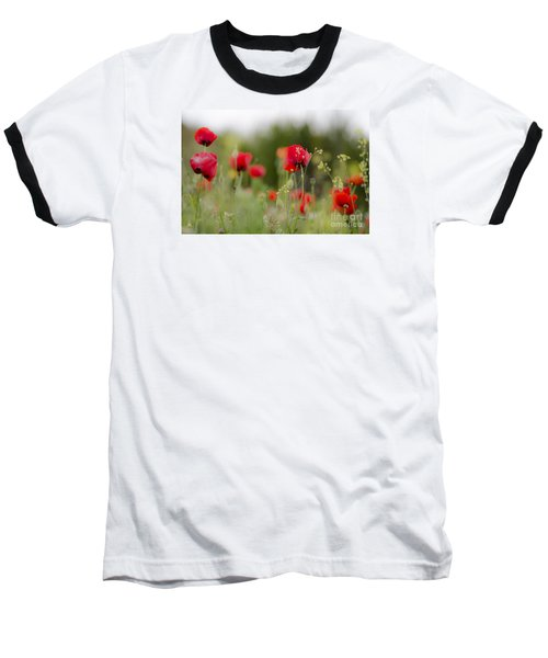 Spring Poppies  Baseball T-Shirt by Perry Van Munster