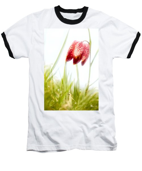 Spring Time Dreams Baseball T-Shirt by Dirk Ercken