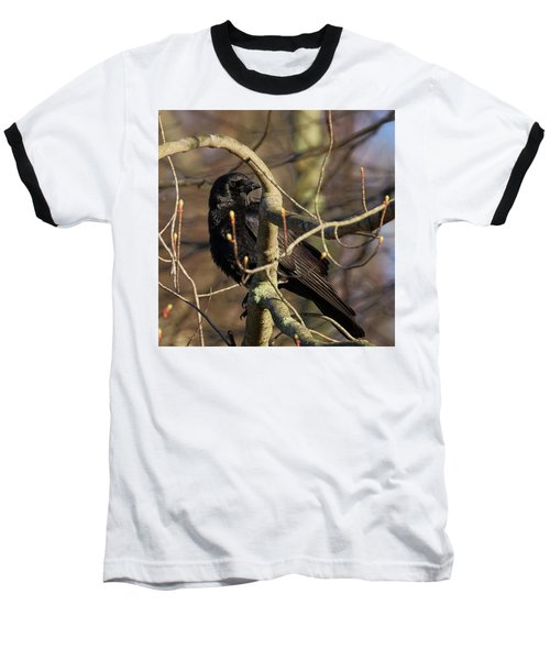 Baseball T-Shirt featuring the photograph Springtime Crow Square by Bill Wakeley