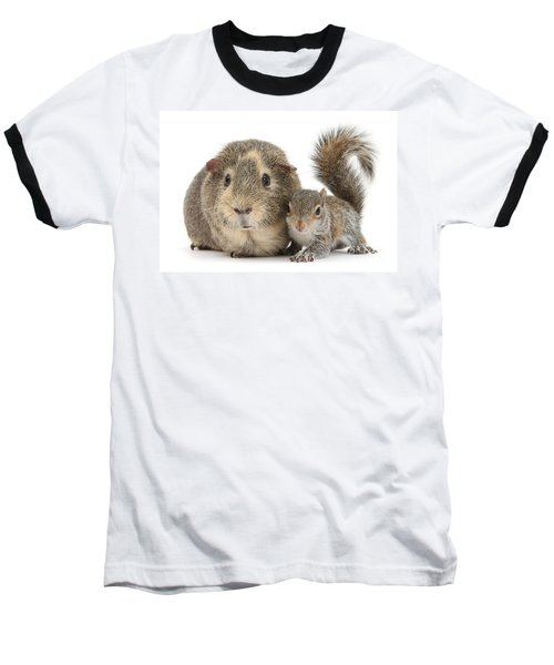 Squirrel And Guinea Baseball T-Shirt