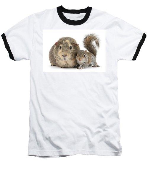 Squirrel And Guinea Baseball T-Shirt