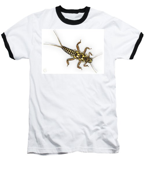 Stonefly Larva Nymph Plecoptera Perla Marginata - Steinflue -  Baseball T-Shirt