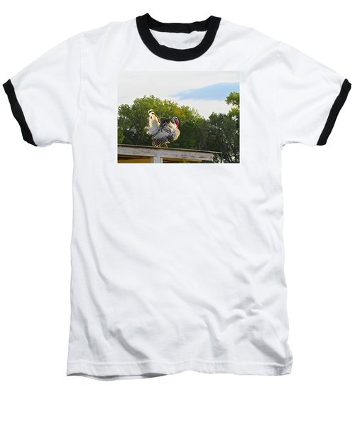 Baseball T-Shirt featuring the photograph Strutting His Stuff by Brenda Pressnall