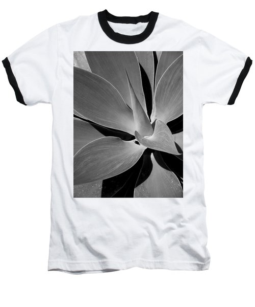 Baseball T-Shirt featuring the photograph Succulent In Black And White by Karen Nicholson
