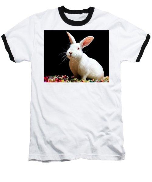 Sully Baseball T-Shirt