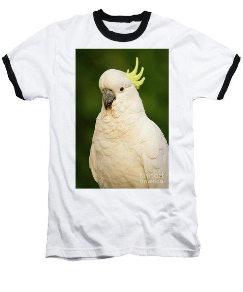 Sulphur Crested Cockatoo Baseball T-Shirt by Craig Dingle