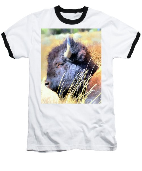 Summer Dozing - Buffalo Baseball T-Shirt by Greg Sigrist