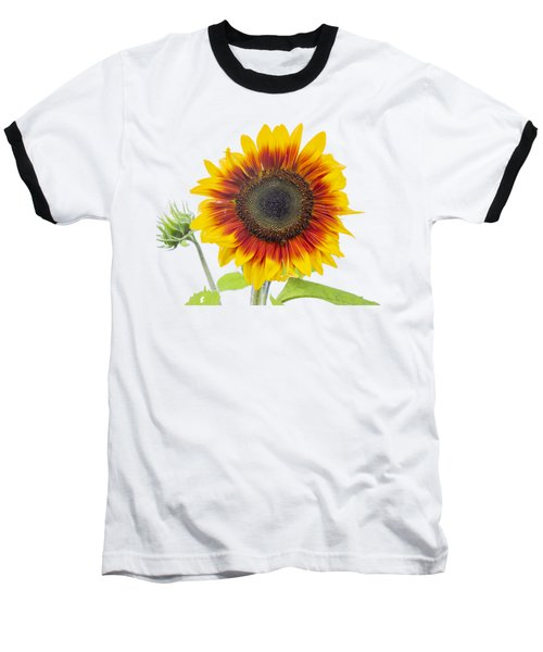 Sunflower 2018-1 Baseball T-Shirt