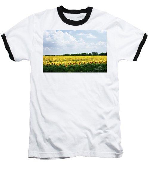 Sunflower Field Baseball T-Shirt