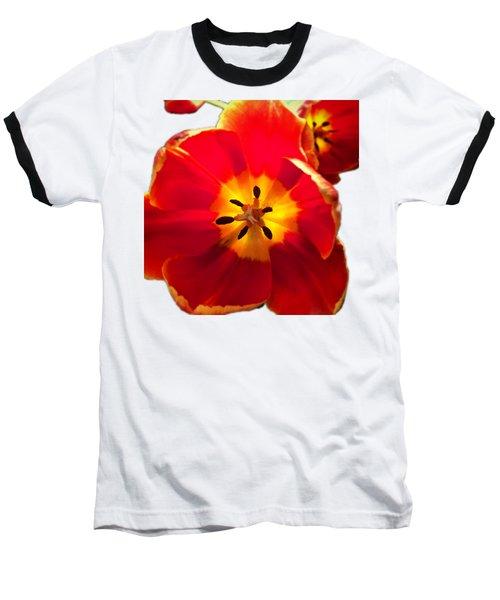 Sunkissed Tulips Baseball T-Shirt
