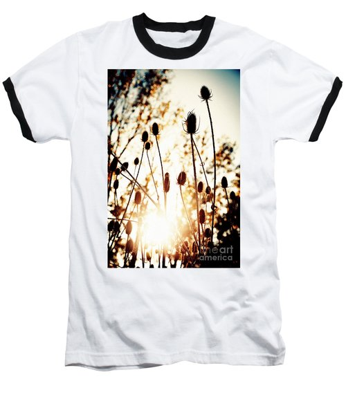 Sunny Afternoon Baseball T-Shirt