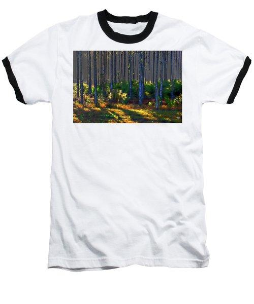 Sunrise On Tree Trunks Baseball T-Shirt