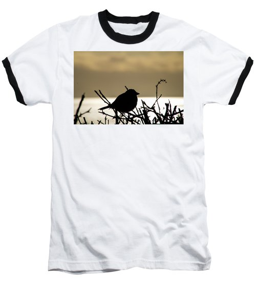 Sunset Bird Silhouette Baseball T-Shirt