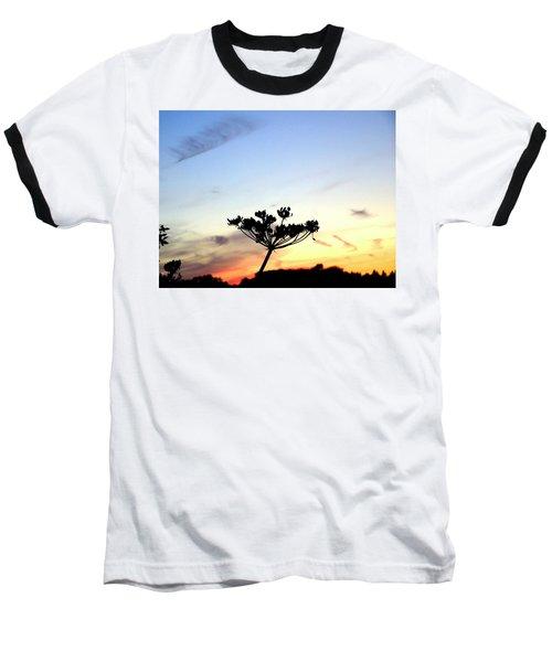 Sunset Seedhead Silhouette  Baseball T-Shirt