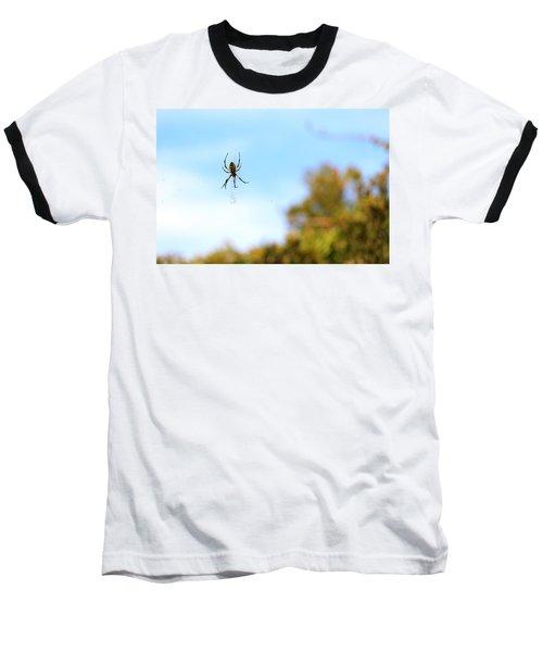 Suspended Spider Baseball T-Shirt