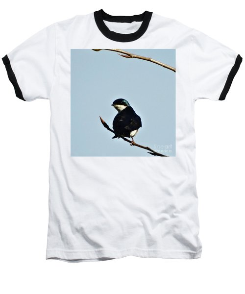 Swallow 2 Baseball T-Shirt