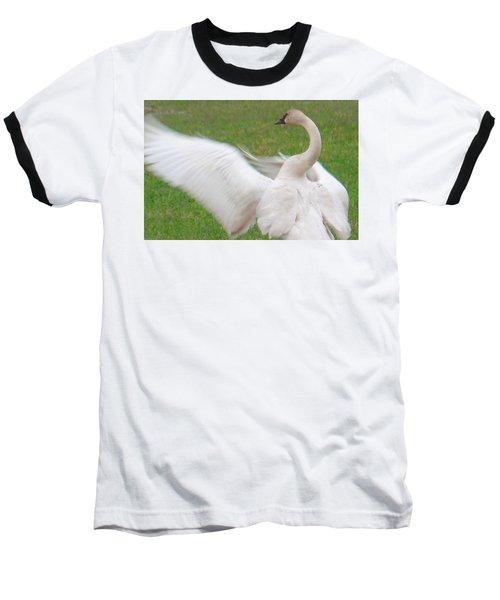 Swan Posing Baseball T-Shirt by Karen Molenaar Terrell