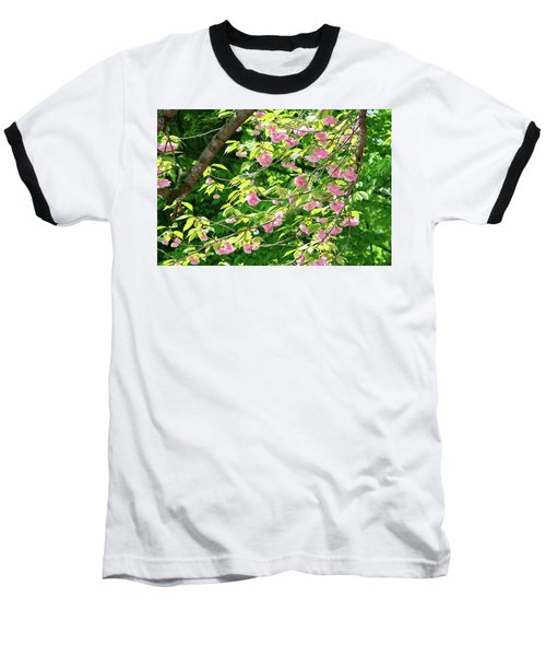Sweeping Cherry Blossom Branches Baseball T-Shirt