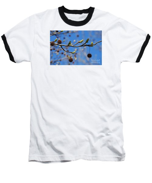 Baseball T-Shirt featuring the photograph Sweet Gum Catkins 20120405_206a by Tina Hopkins