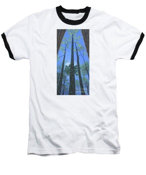 Tall Blue Ridge Beauty Baseball T-Shirt