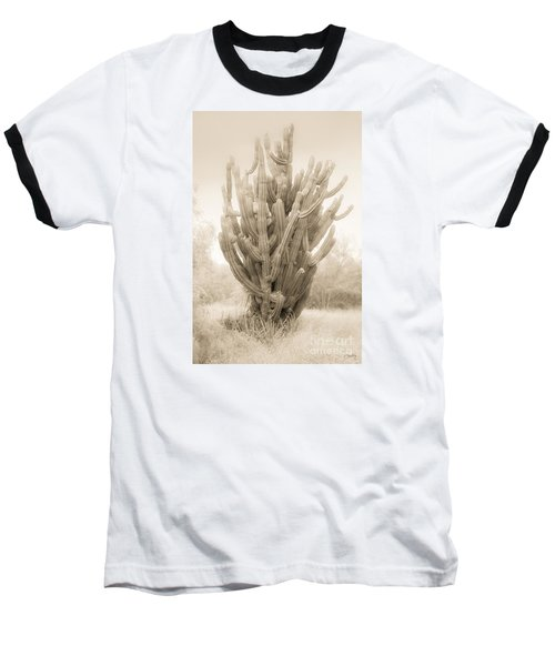 Tall Cactus In Sepia Baseball T-Shirt