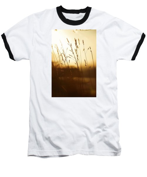 Tall Grass In The Morning Baseball T-Shirt by Nikki McInnes