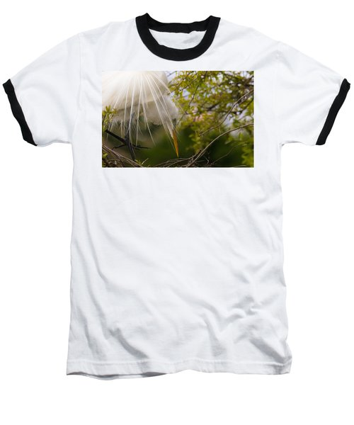 Tending To The Nest Baseball T-Shirt by Kelly Marquardt