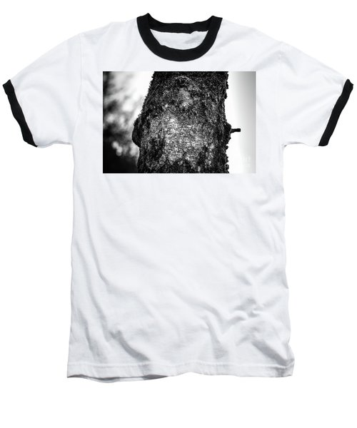 The Eagle In The Tree Baseball T-Shirt