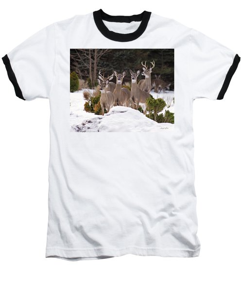 Baseball T-Shirt featuring the photograph The Family by Angel Cher
