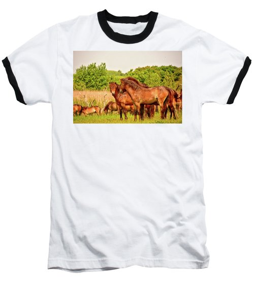 The Herd 2 Baseball T-Shirt
