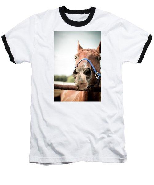 The Horse's Mouth Baseball T-Shirt by Kelly Hazel