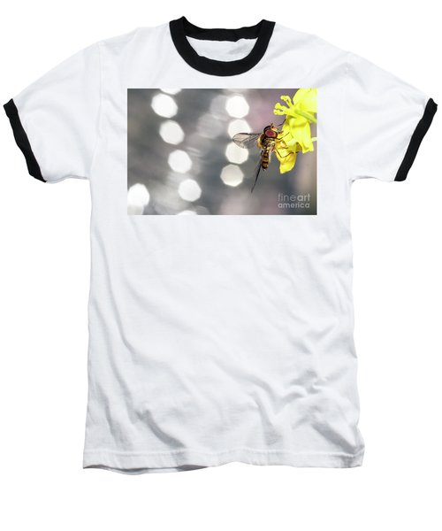 The Hoverfly Baseball T-Shirt