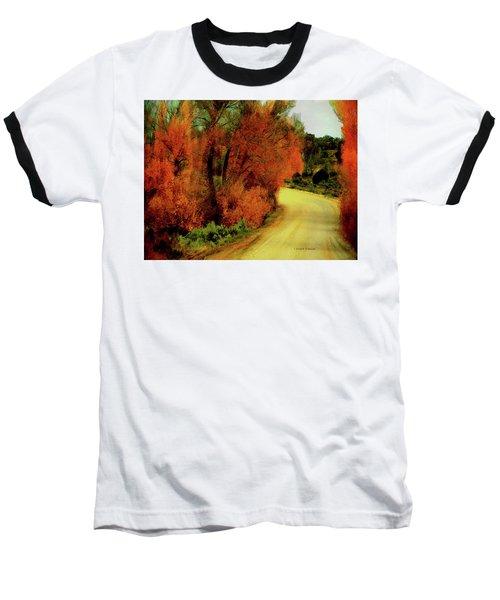 The Journey Home Baseball T-Shirt by Lenore Senior