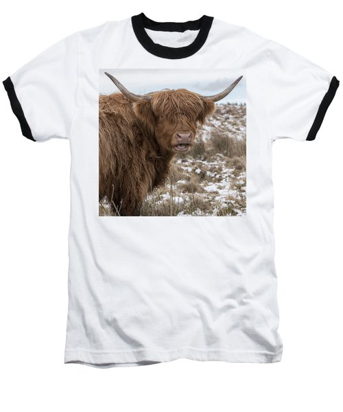 The Laughing Cow, Scottish Version Baseball T-Shirt by Jeremy Lavender Photography