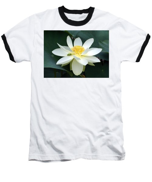 Baseball T-Shirt featuring the photograph The Lotus Flower The Frog And The Bee by Gary Crockett