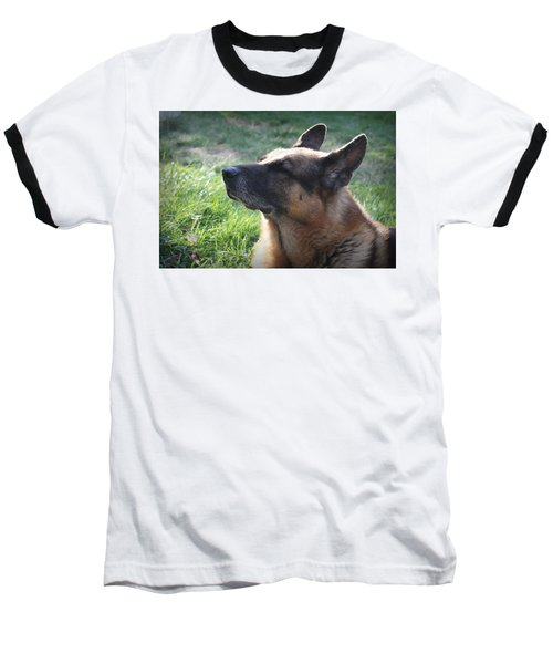 The Love Of An Old Dog Baseball T-Shirt