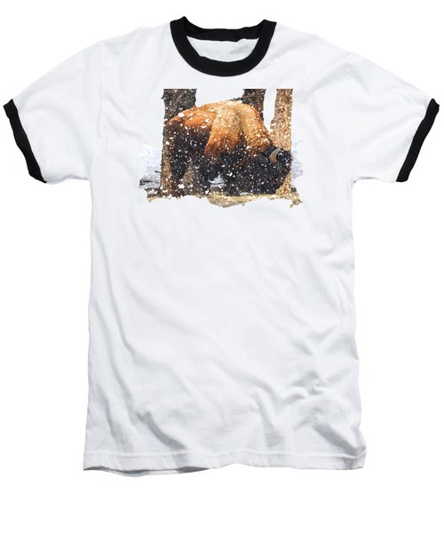 The Majestic Bison Baseball T-Shirt by Image Takers Photography LLC - Carol Haddon