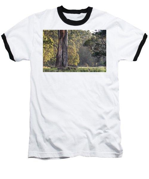 The Meadow Baseball T-Shirt